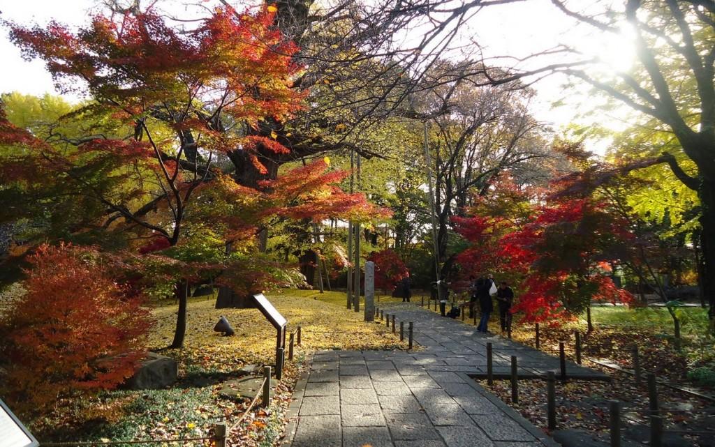 「世田谷 松原 風景」の画像検索結果