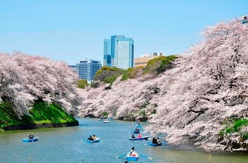 千代田区_風景