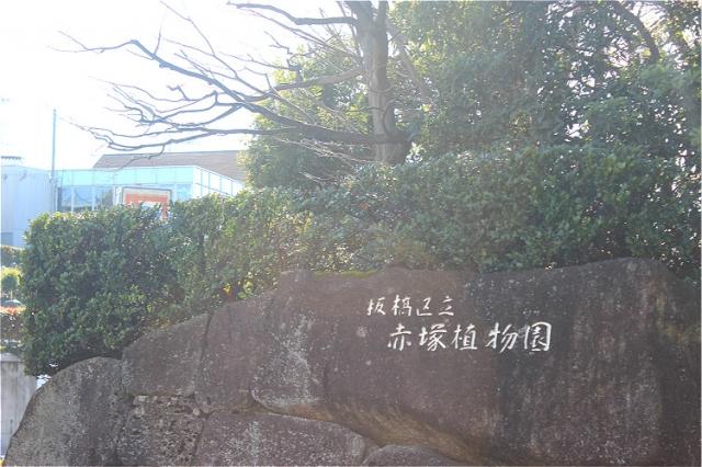 板橋区_板橋区立赤塚植物園