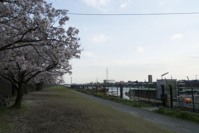 新小岩駅_新中川河川敷の船着き場