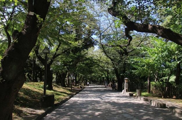 王子駅_飛鳥山公園散策コース